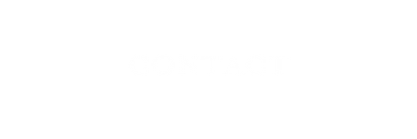 CONTACT WHITE.png