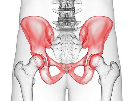 pelvic-health.jpg