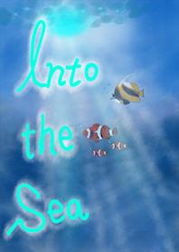 深海 夏の海 海の中 海中 熱帯魚 夏 海