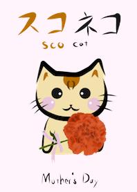 子猫 スコネコ スコティッシュフォールド チョコ 母の日 着せかえ