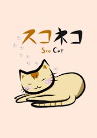 子猫 スコネコ スコティッシュフォールド ほのぼの 癒し 着せかえ