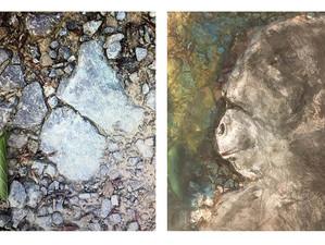 Gorilla in Stein