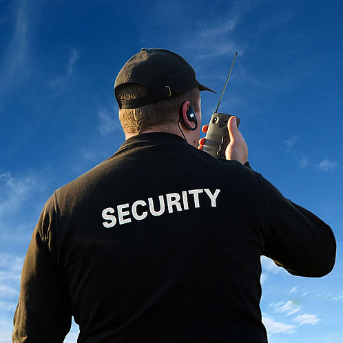 2020 Security Contribution