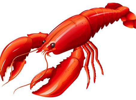 Lobsterfest 2019 Committee
