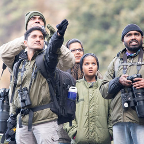 Birding in Goa: Nov. 2016