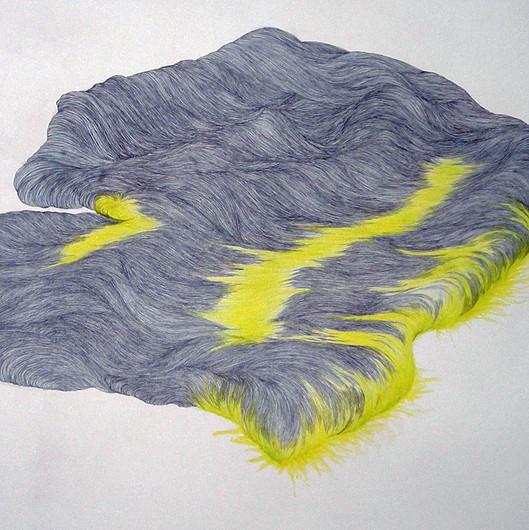 Piedras barbudas / Hairy stones