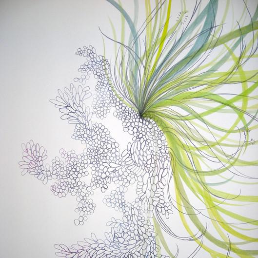 Maleza / Weeds