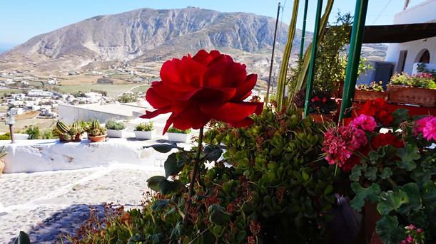 Mesa Gonia miestelyje, Santorinyhe Graikijoje
