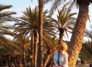 Vai paplūdimys palmių miške