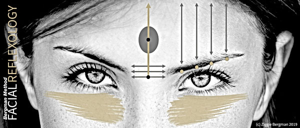 Facial Reflexology, Bergman Zone Method,