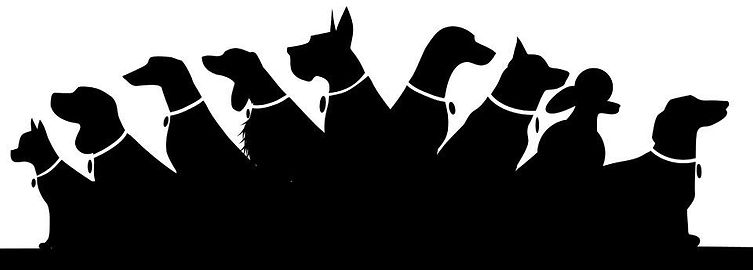 Dog Outline.jpg