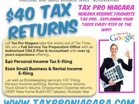 Baby it's Cold Outside.....Tax Pro Niagara Winter Update.