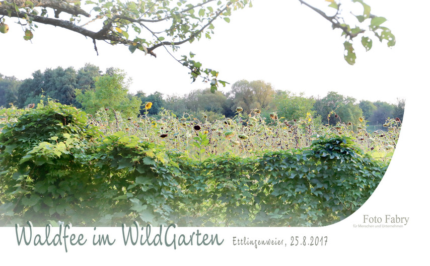 20170825_EW_Garten+Sonja8