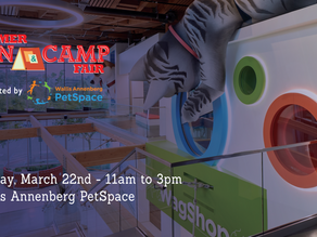 CANCELED: momsla camp expo in Playa Vista