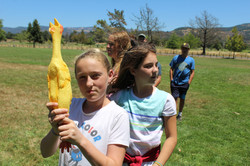 Rubber chickens, anyone?