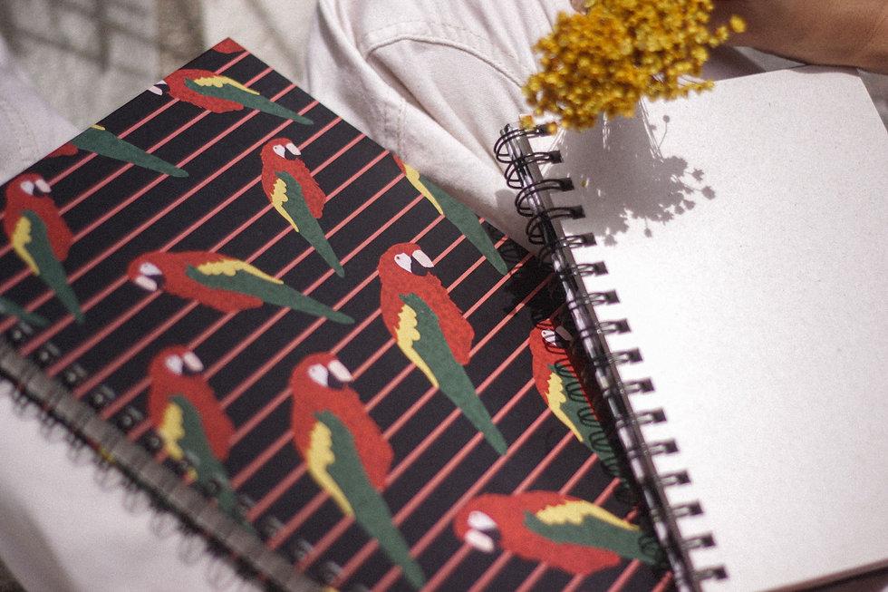 birdsbook.jpg