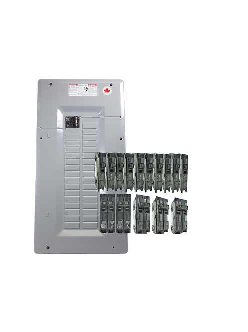 Siemens 100A Panel Package-2 - 20 Poles