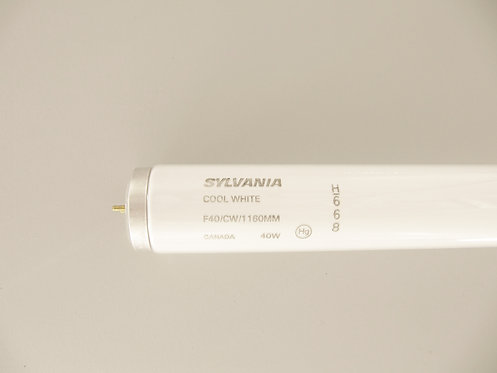SYLVANIA - 40 T12 Cool White - Medium 2-Pin - 4FT