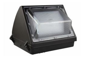 LED Wall Pack - 100W - 5000K