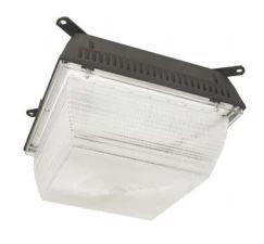 LED Canopy Luminaire - 100W - 5500K