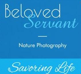 Nature Photography Logo.jpg