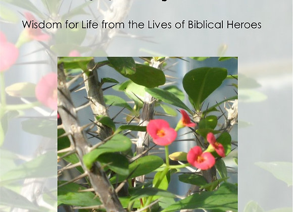 In Real Life: Wisdom for Life from the Lives of Biblical Heroes