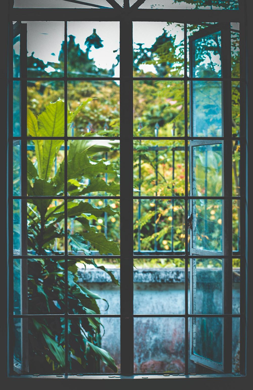 window, open, authentic, nature