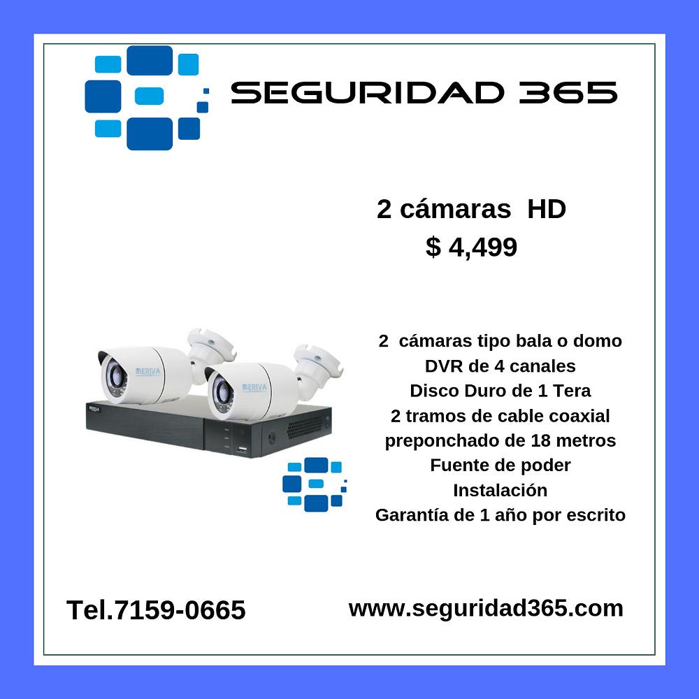 Seguridad365