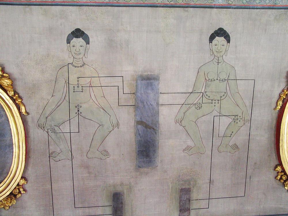 Points d'acupression pour massage Thaï