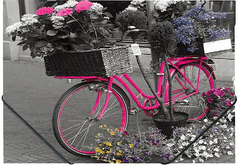 "Gumis mappa, 15 mm, PP, A4, ""Bike"""