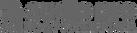 audio-pro-logo-large-premier-sounds-corn