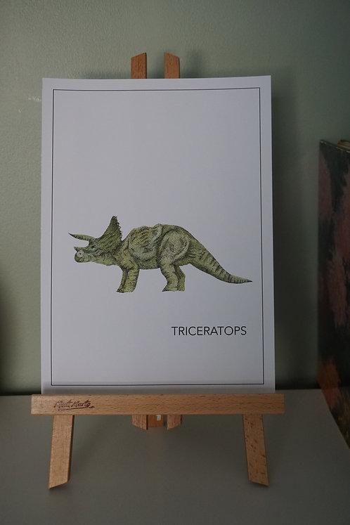 Triceratops Print