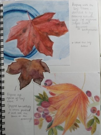 Sketchbook page with autumn leaves in coloured pencil.