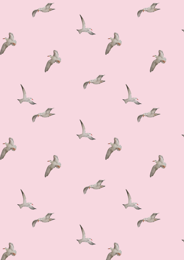 A seagull repeat pattern on a pink background.