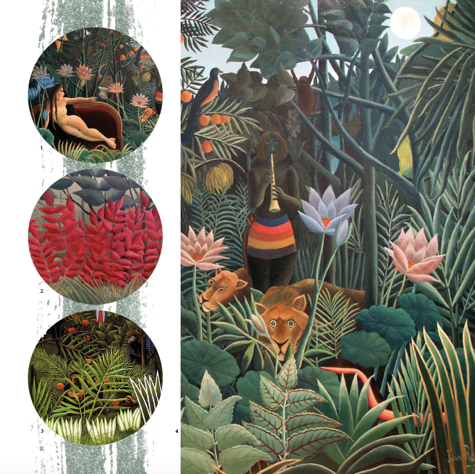 Henri Rousseau Inspiration Pictures