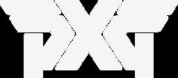 PXG-Logo-WHITE (1).png