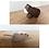 Thumbnail: Jouets en bois Holztiger - plusieurs modèles