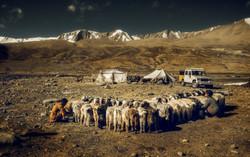ladakh_photography_workshop_2017_10