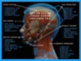 TabibMelloDDS - TMJ Symptoms Diagram - 0