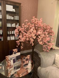 Stunning welcome at Radiance Beauty Salon, Lurgan