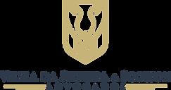 Guia de Logotipo Scotton.png