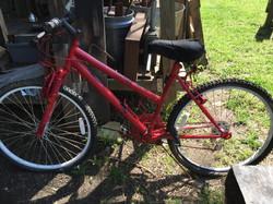 The original bike