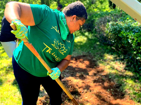 Urban Farming: Raised Bed