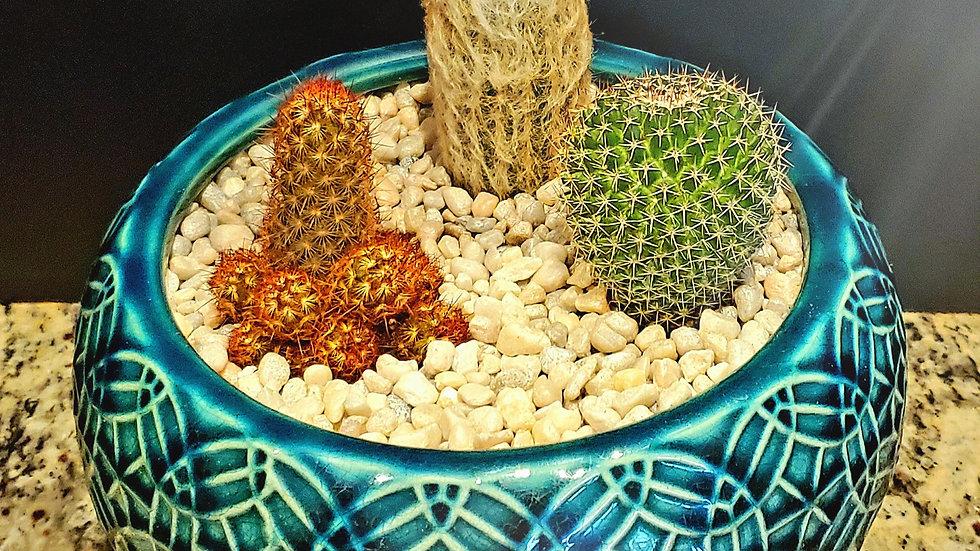 Custom Arrangement   Dia Blue Rivage Ceramic Bowl Planter