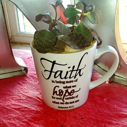 ALT Faith.jpg