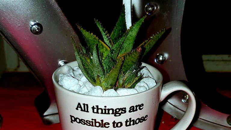 Inspirational Mug CenterPEACE