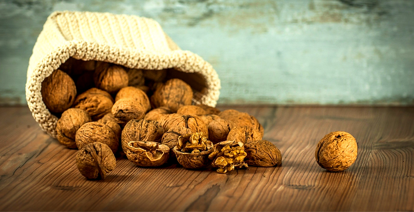 walnuts-1213008_1920_edited_edited.png