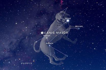 canis-major.jpg