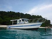New 2019 boat