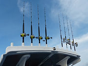 Bluesails Sportfishing gear